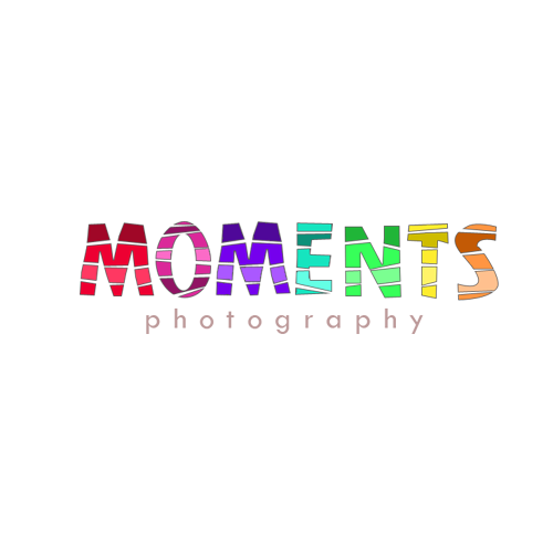 logo design for swansea photographer